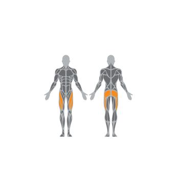 Kojų raumenų treniruoklis SE103 | 2