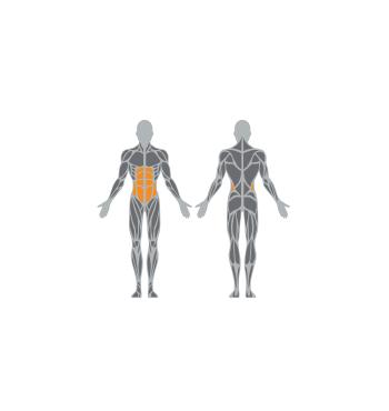 Pilvo raumenų treniruoklis SE114 | 2
